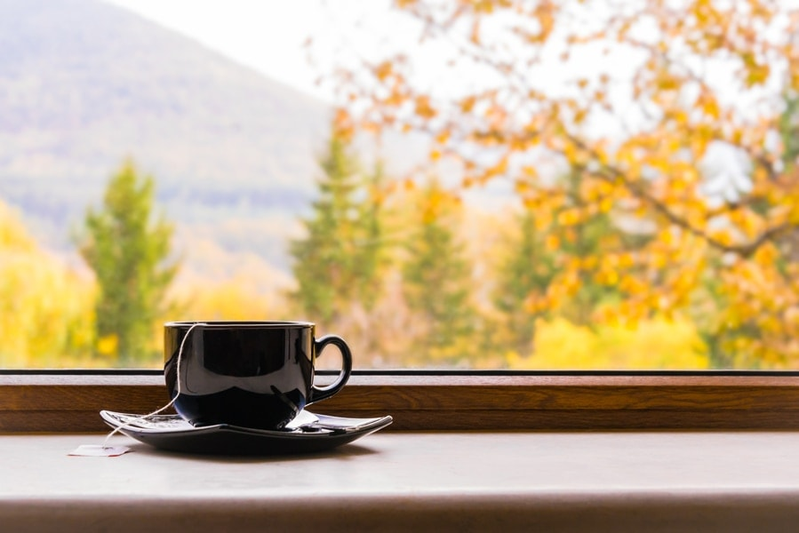 cup of tea in front of a bay window in fall representing the importance of indoor air quality|Shot inside an old train in autumn maples in Kyoto